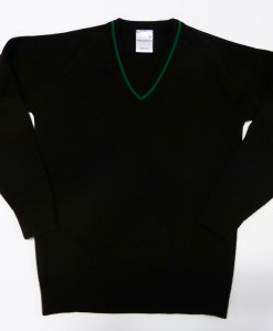 Swakeleys Girls School Jumper