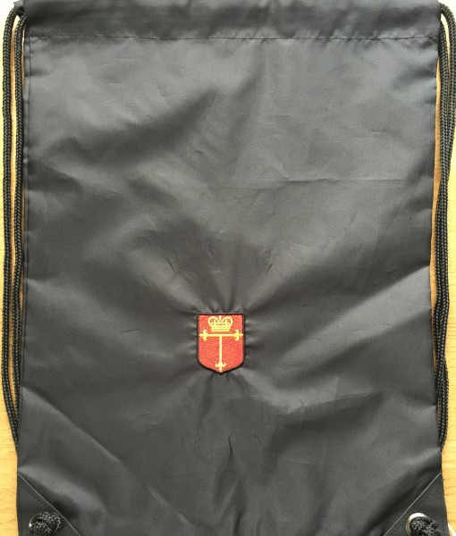 image1 (1) TS bag